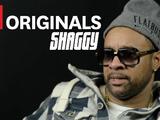 Shaggy - The Last Word: Habibi (I Need Your Love)