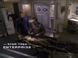Star Trek: Enterprise: Enterprise - Hatchery