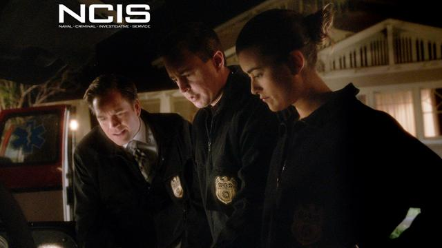 NCIS - Radiated Head