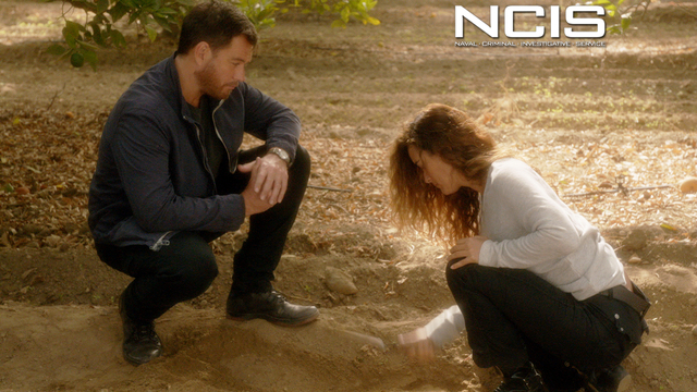 2. NCIS - Past, Present, And Future