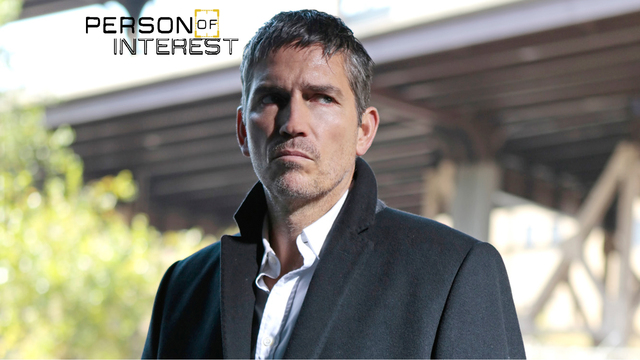 10. Person Of Interest - The Devil's Share