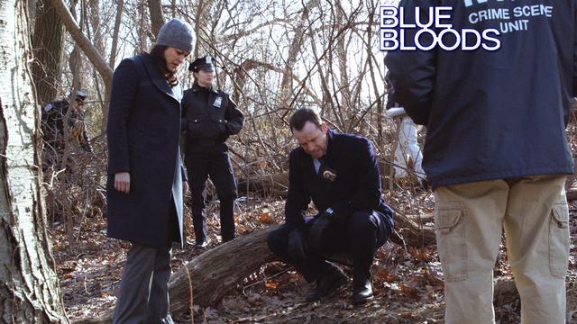 14. Blue Bloods - Manhattan Queens
