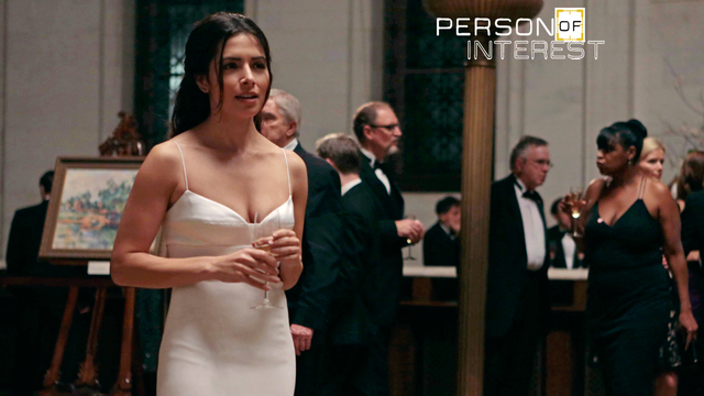 14. Person Of Interest - Provenance