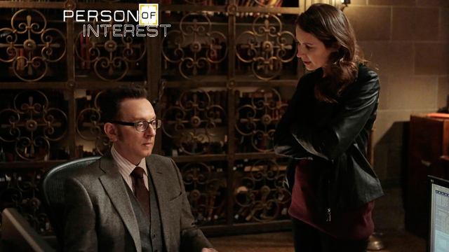 17. Person Of Interest - /