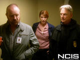 5. NCIS - The San Dominick