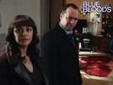 14. Blue Bloods - The Poor Door