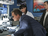 7. NCIS - 16 Years
