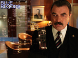 13. Blue Bloods - Stomping Grounds