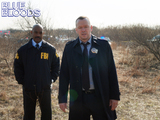 20. Blue Bloods - Down the Rabbit Hole