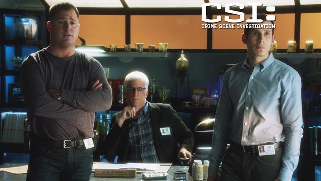 CSI: - Accomplice?