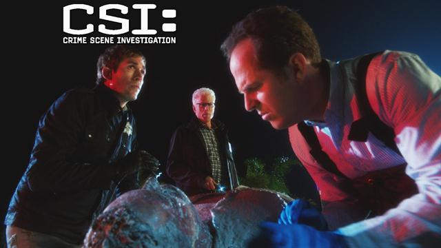 CSI: - Murder In Paradise