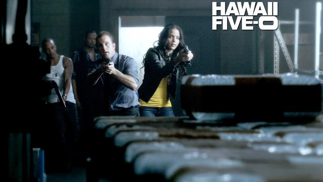 Hawaii Five 0 - Borrowed Time