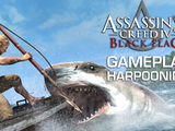 Harpooning Sharks and Whales - Assassin's Creed IV: Black Flag Gameplay