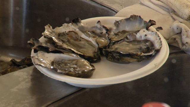 CBS Evening News: Environmentalists at odds over oysters