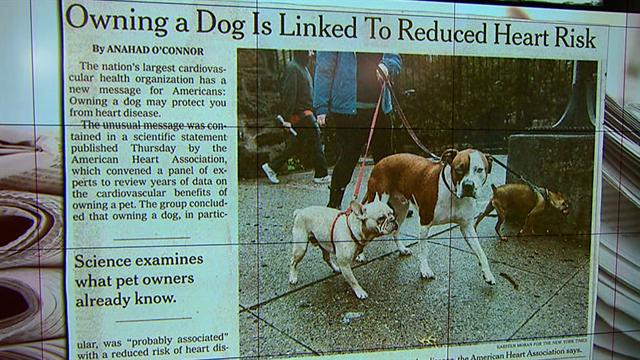 CBS This Morning HealthWatch: Study: Owning a dog reduces heart disease risk