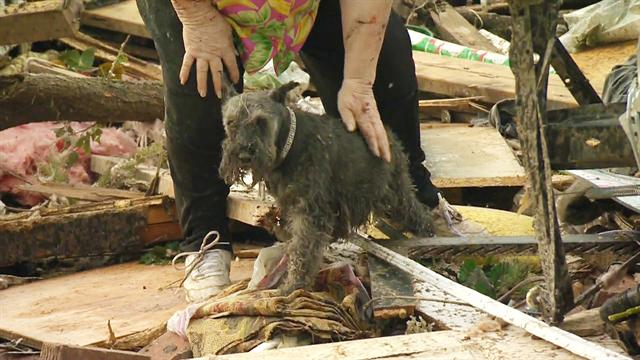 CBS Evening News: Okla. tornado survivor finds dog buried alive under rubble