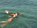 Australian swimmer braves sharks to swim from Cuba to U.S.