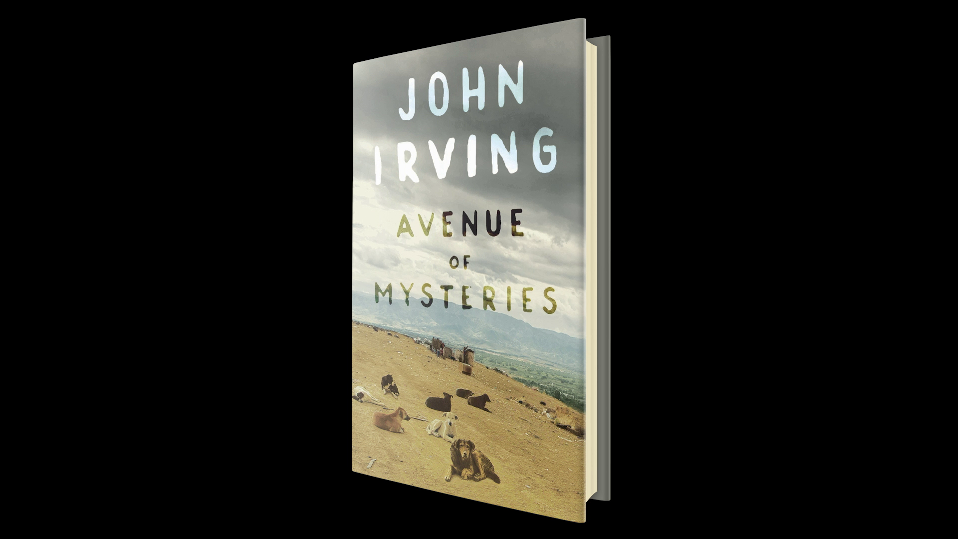 John Irving's 'avenue Of Mysteries'