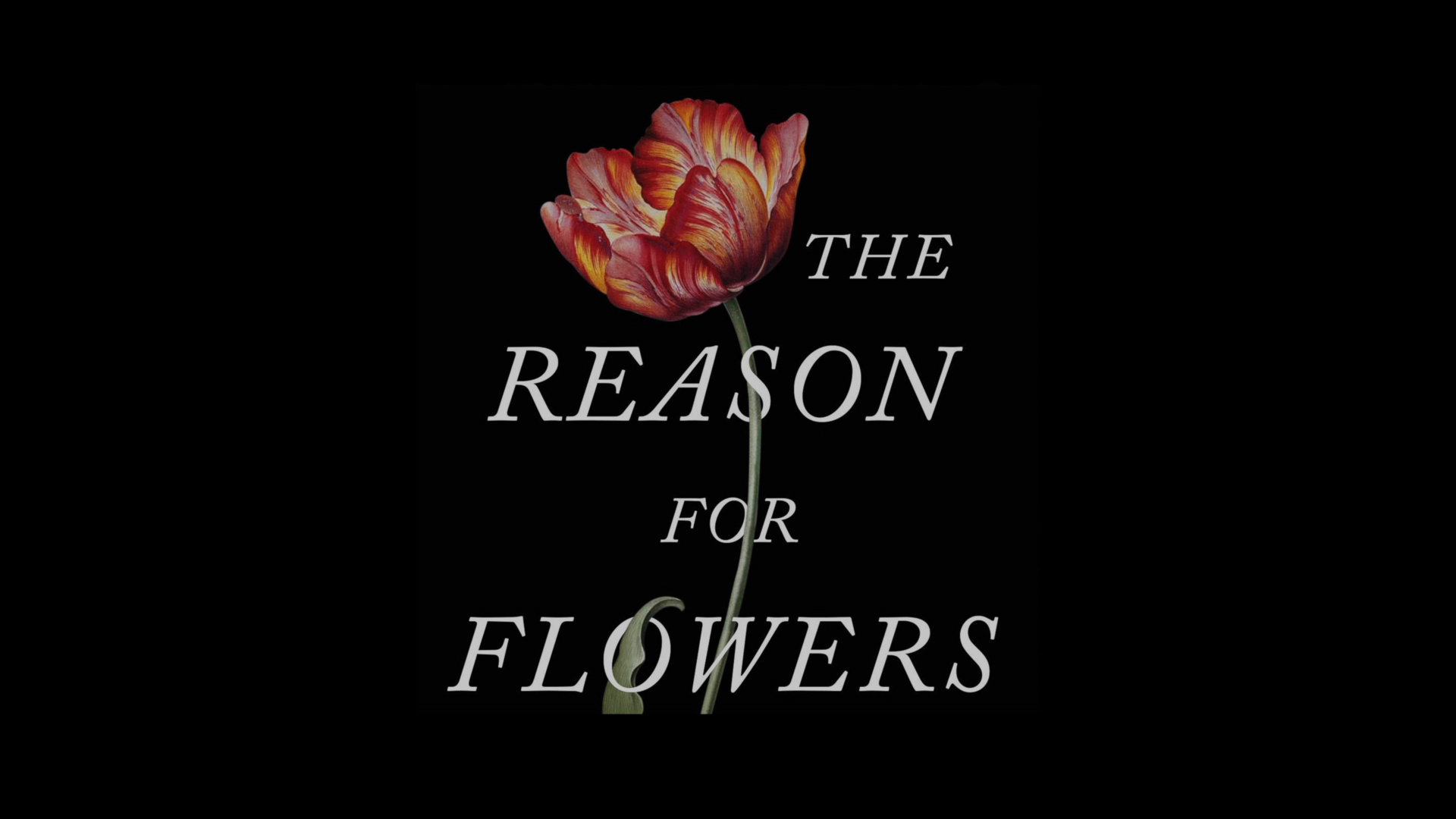 Author Stephen Buchmann investigates 'The Reason for Flowers'