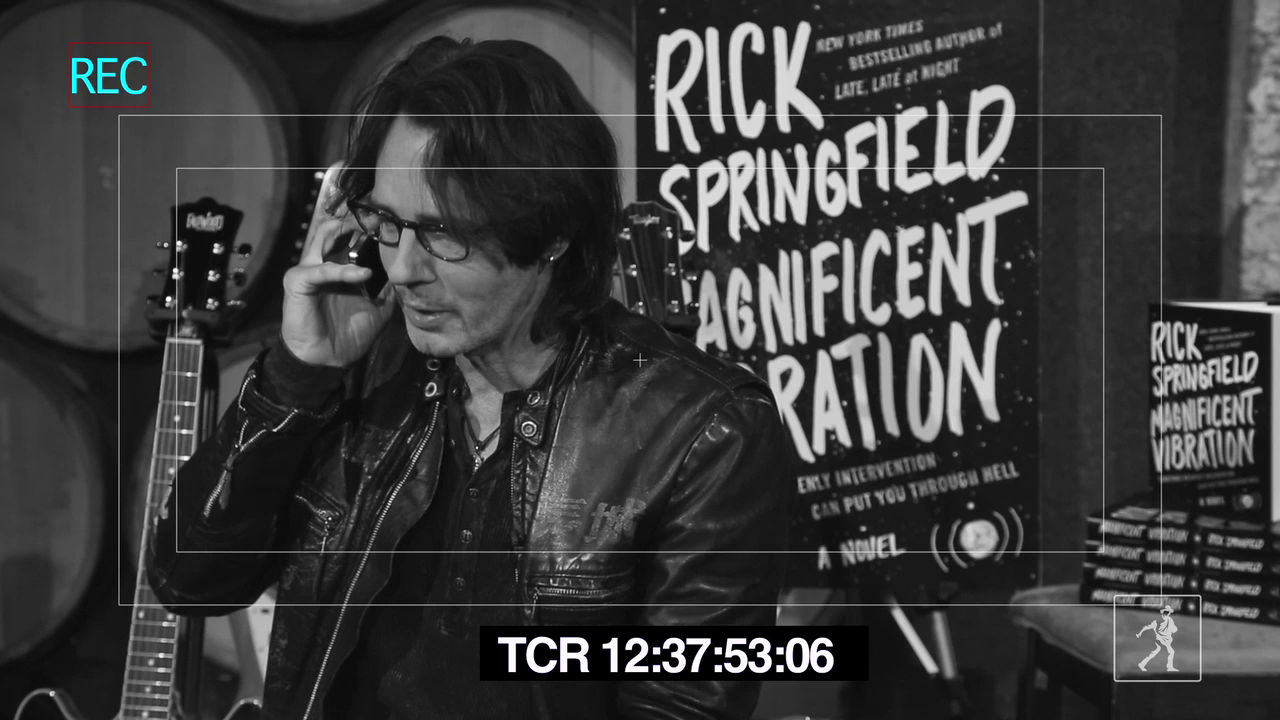 Rick Springfield's Magnificent Vibration