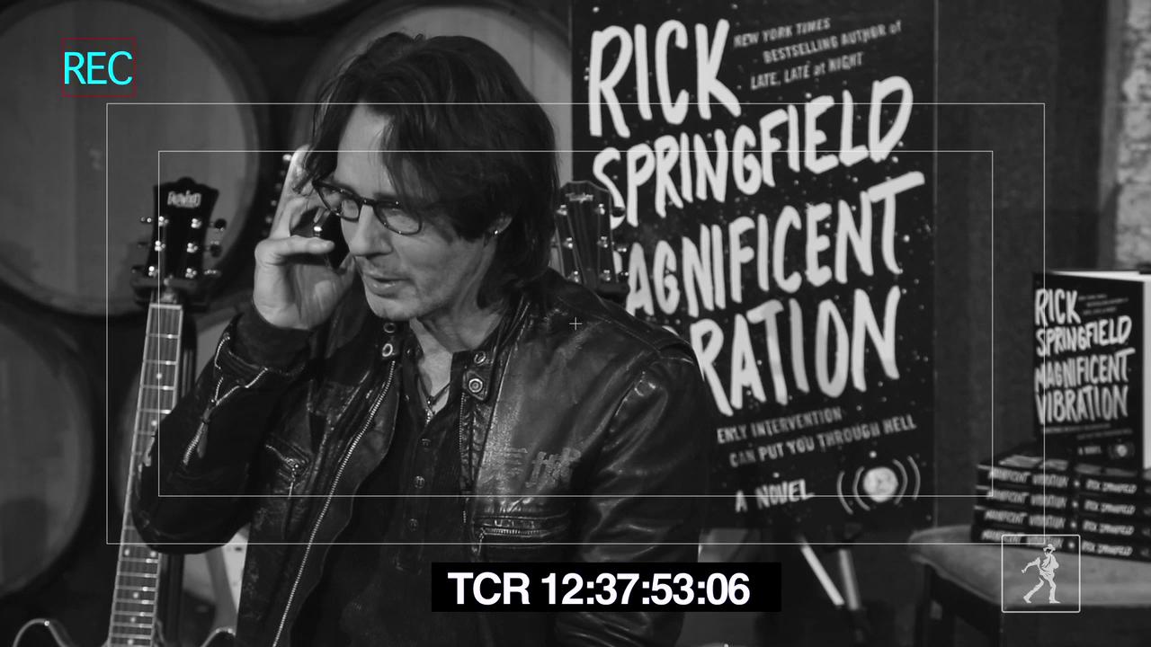 Rick Springfield's Magnificent Vibration