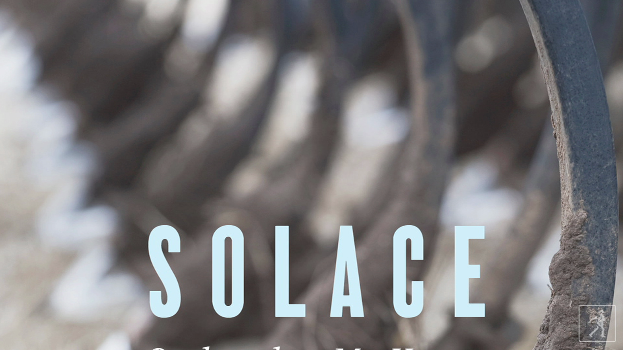 Belinda McKeon Talks About SOLACE