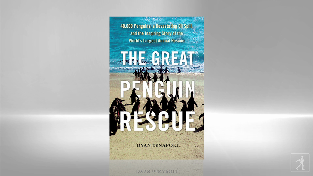 Be inspired by THE GREAT PENGUIN RESCUE
