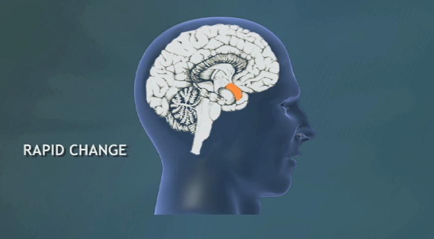 How Brain Chemistry Affects Behavior Change Simon Schuster Videos