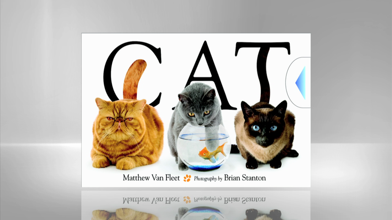 Meet Matthew Van Fleet, Author of Cat