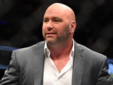 Looking Ahead to UFC 205