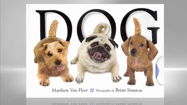 Matthew Van Fleet: Dog