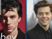 Harry Styles Adorably Interviews Timothee Chalamet