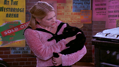 Sabrina The Teenage Witch - A Girl and Her Cat