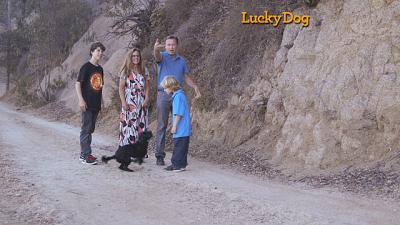 Lucky Dog - Emmitt