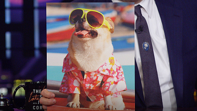 The Late Late Show with James Corden - Dogs In Sunglasses