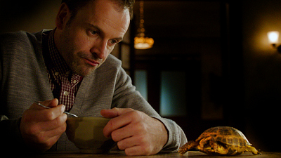 Elementary - Sherlock Adores Clyde The Tortoise, And Who Can Blame Him?
