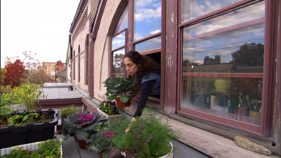 Garden Secrets - Urban Gardening