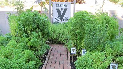 Garden Secrets - Victory Veggies