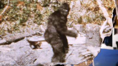 The Missing Evidence - Bigfoot