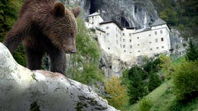 Wild Castles - Predjama