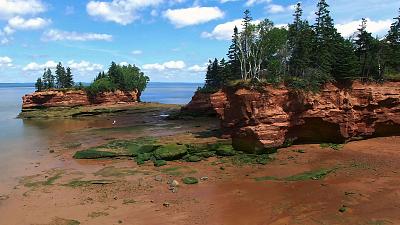 The Living Beach - Nova Scotia