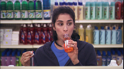 The Sarah Silverman Program - Officer Jay