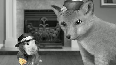 Wonder Pets'
