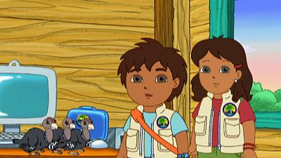 Go, Diego, Go! - Three Little Condors