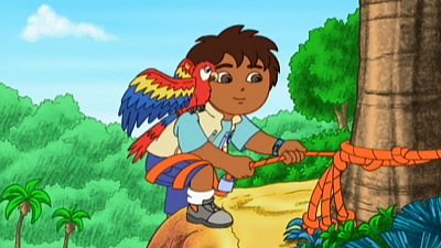 Go, Diego, Go! - The Mommy Macaw