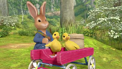 Peter Rabbit'