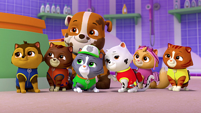PAW Patrol - Pups Save the Runaway Kitties/Pups Save Tiny Marshall