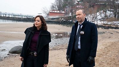 Blue Bloods - More Than Meets the Eye