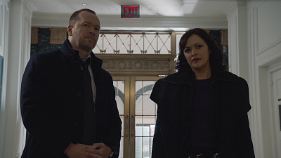 Blue Bloods - The Common Good