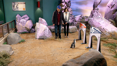 The Odd Couple - Batman vs. The Penguin